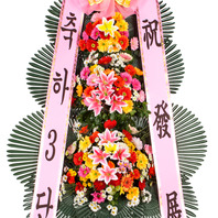 축하3단 기본